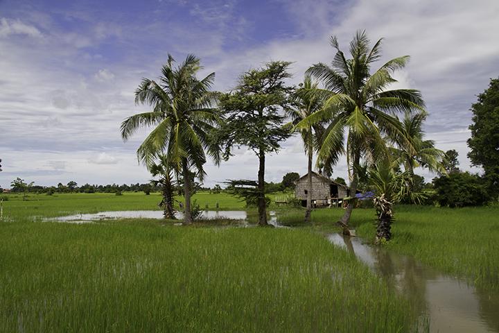 Flooding in Siem Reap - September 2011