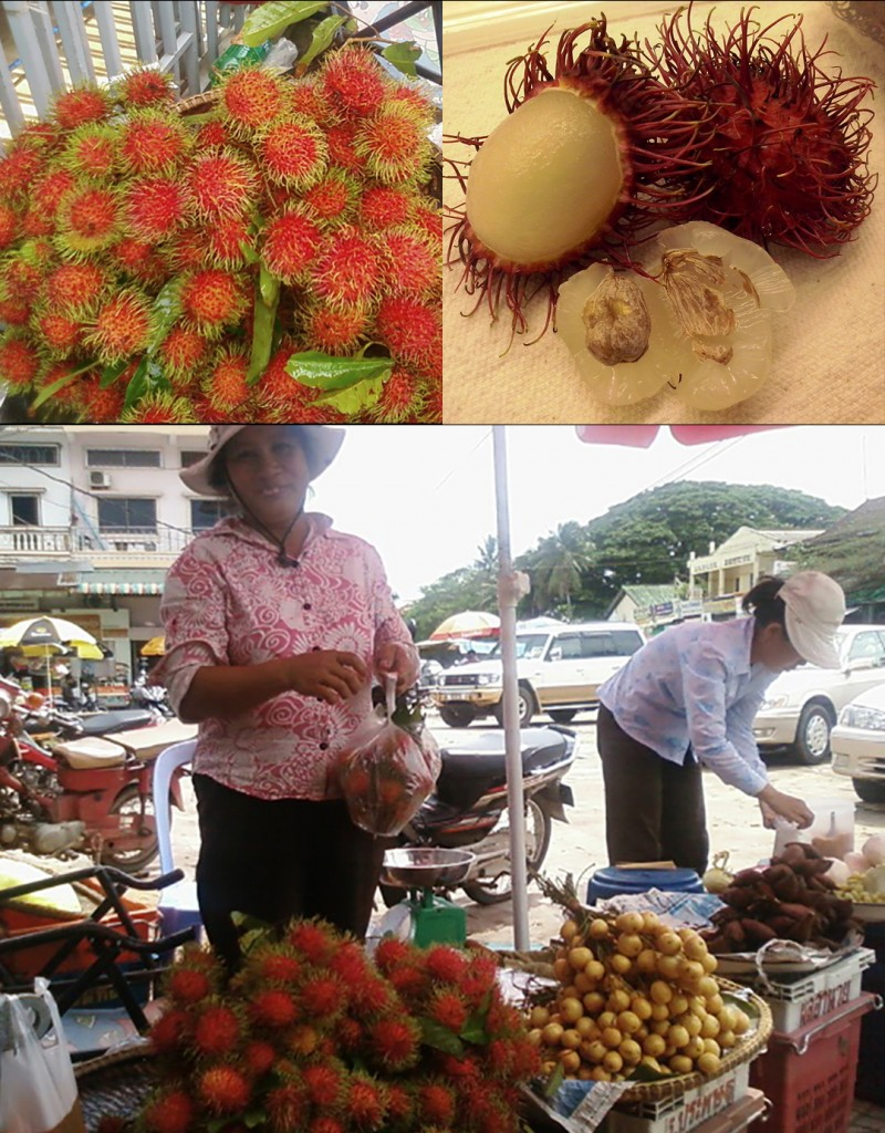 Collage rambutan