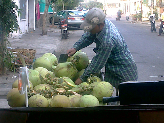 11012010074 Coconut Vendor sm