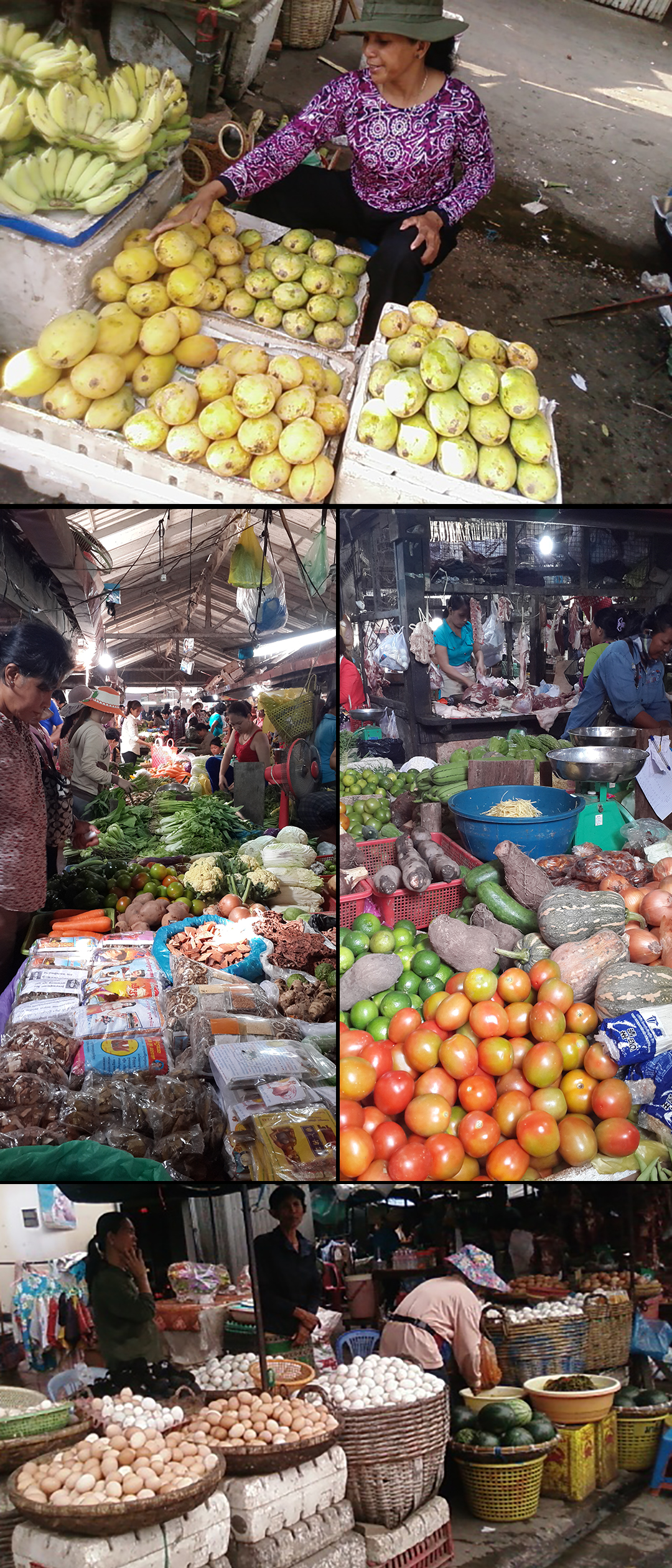 Collage Dry market